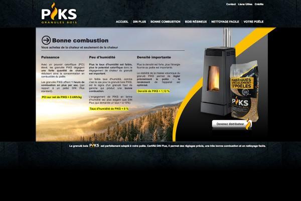 webdesign-piks-2