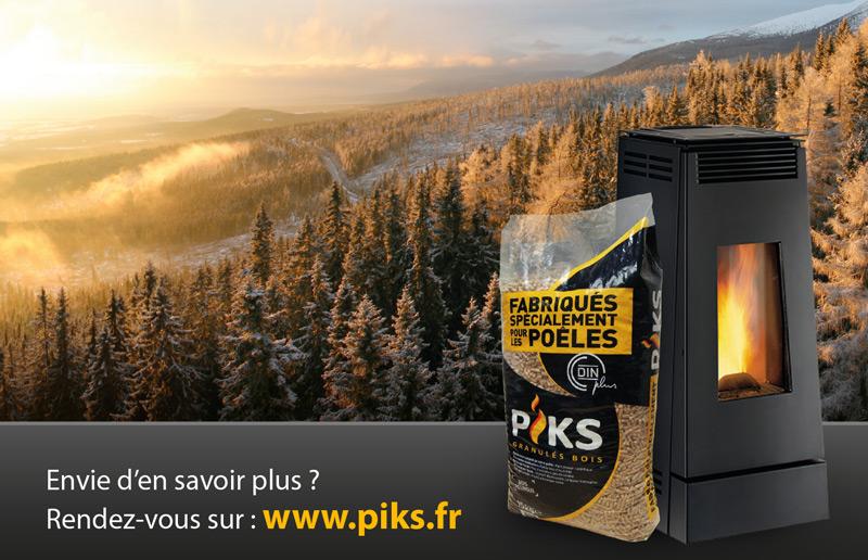edition-affiche-piks-2