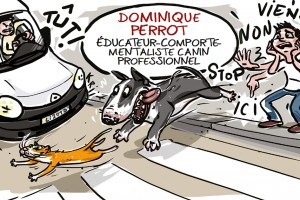 illustration-educateur-canin-3
