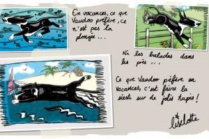 illustration-vaudoo-1