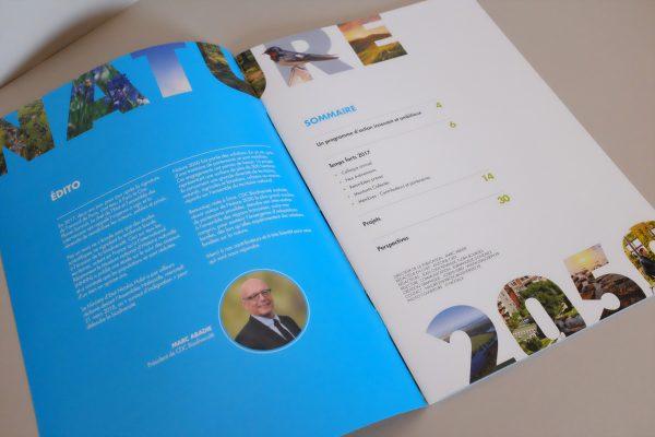 Intérieur du rapport annuel