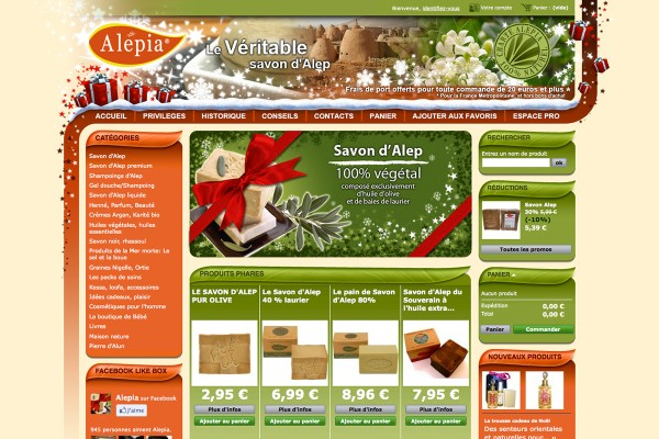 webdesign-alepia-site-noel