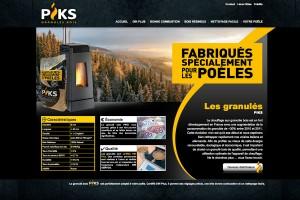 webdesign-piks-1