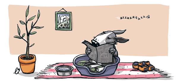 illustration-educateur-canin-2