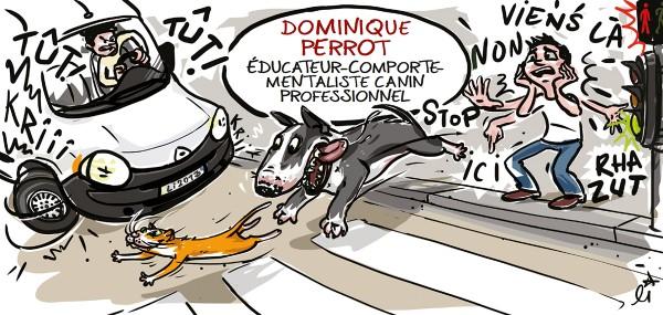 illustration-educateur-canin-3